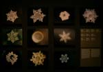 Biennal of Architecture, how the shape of a crystall of water changes depending on where is coming from (Masaru Emoto)